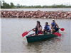 A group of young adults canoeing